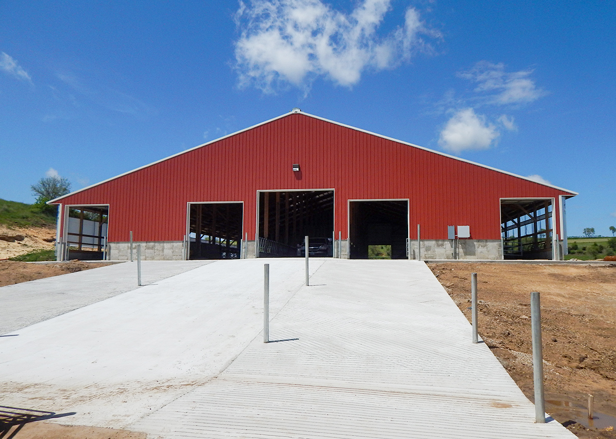 Free Stall Barn flatwork concrete